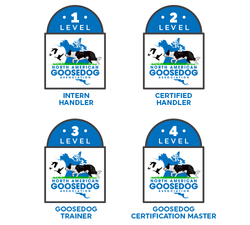 Handler Badges